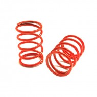 GT Shok Springs Red 5,5 Coils Medium/soft (2)